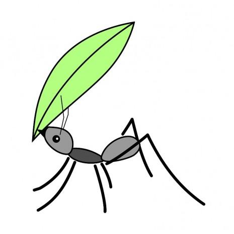 حلم رؤية النمل في المنام