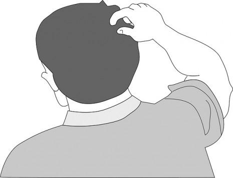 رؤية القمل في المنام في الشعر أو الجسم او الفراش