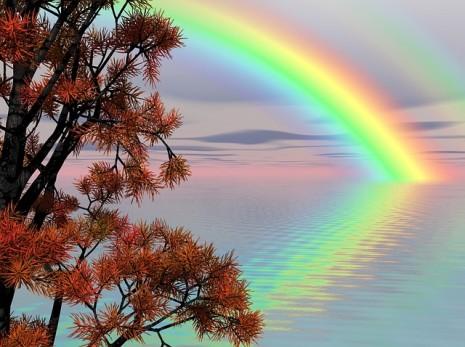 rainbow vision رؤية قوس قزح