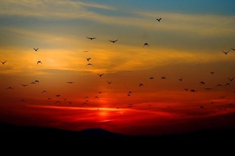 تغير لون السماء أو اختلاف شكلها في الحلم