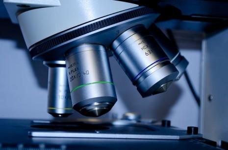 طرق تحديد نوع الجنين المخبرية