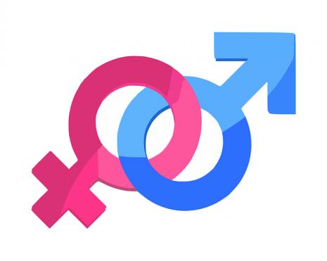 تحديد جنس الجنين ذكر أو أنثى
