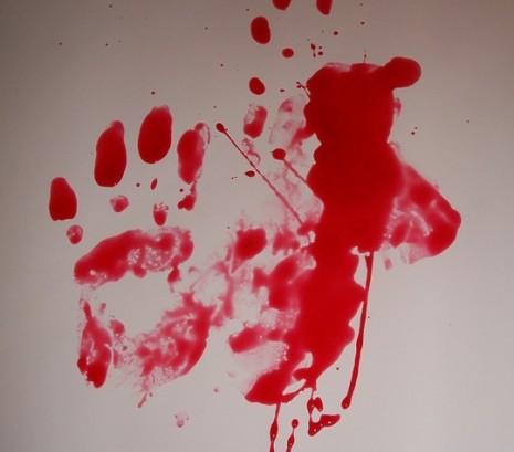 نزول دم الحيض للحامل والمتزوجة في الحلم