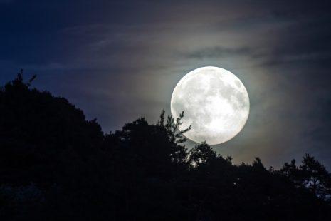 ضوء القمر ونور البدر وتفسيره في الحلم